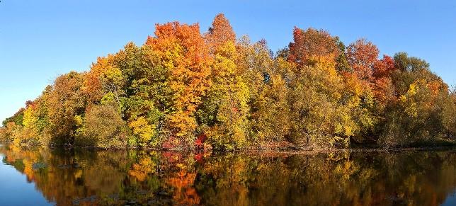 wisconsin fall foliage trips