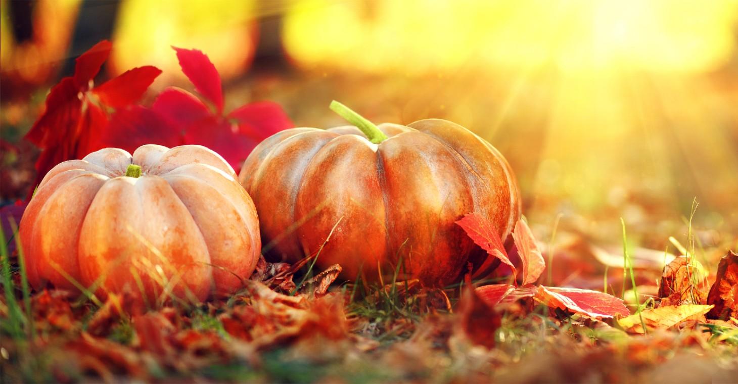 pumpkins and leaves on a Cedarburg, WI fall getaway
