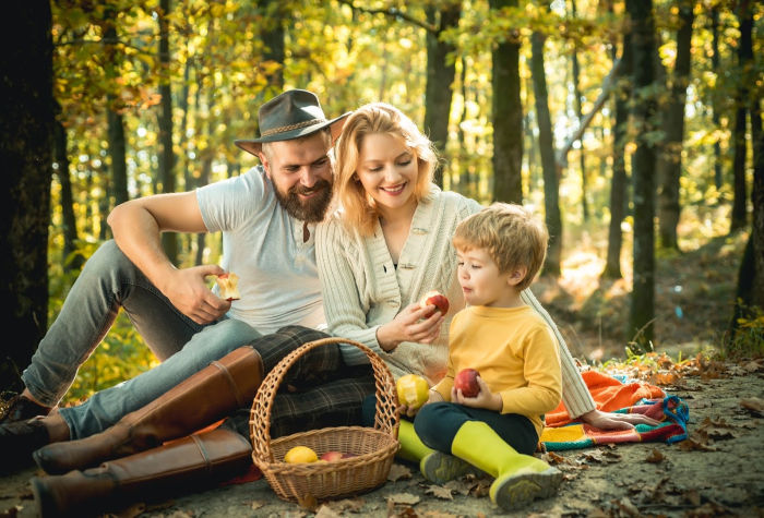 a mother, father, and child having a picnic in the forest